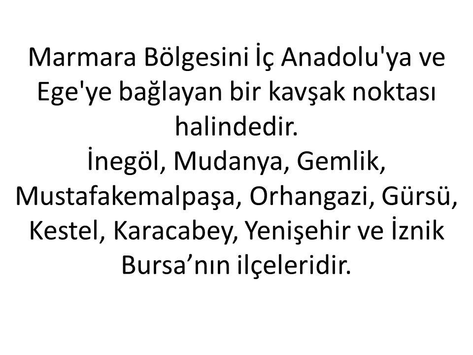 Marmara Bölgesini İç Anadolu ya ve Ege ye bağlayan bir kavşak noktası halindedir.