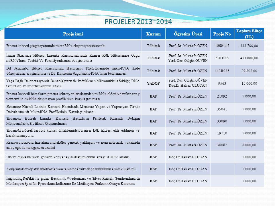 PROJELER 2013 -2014 Proje ismi Kurum Öğretim Üyesi Proje No