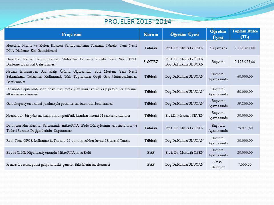 PROJELER 2013 -2014 Proje ismi Kurum Öğretim Üyesi Toplam Bütçe (TL)
