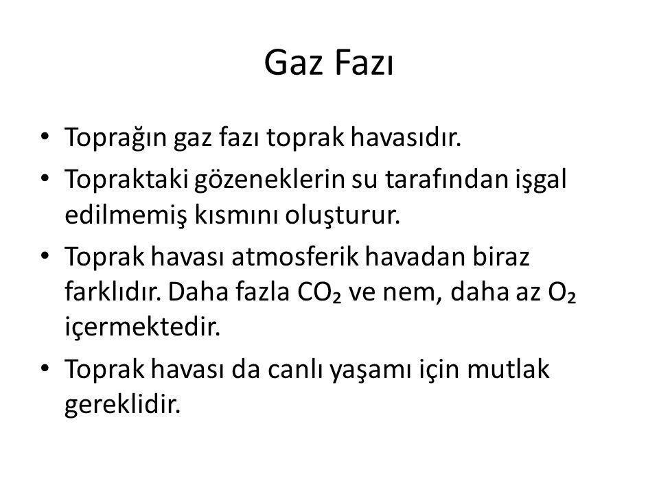 Gaz Fazı Toprağın gaz fazı toprak havasıdır.