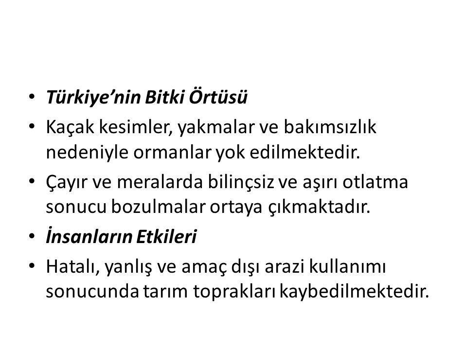 Türkiye'nin Bitki Örtüsü
