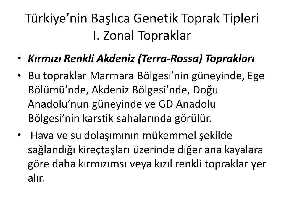 Türkiye'nin Başlıca Genetik Toprak Tipleri I. Zonal Topraklar
