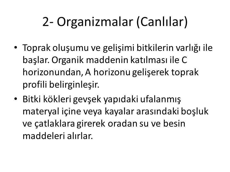 2- Organizmalar (Canlılar)