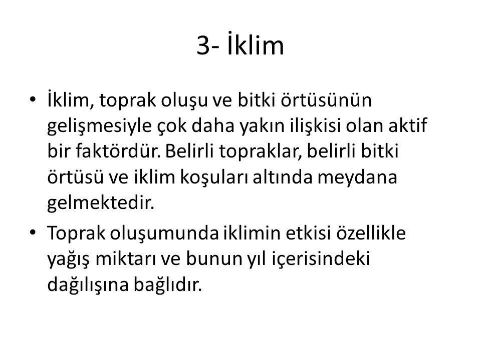 3- İklim