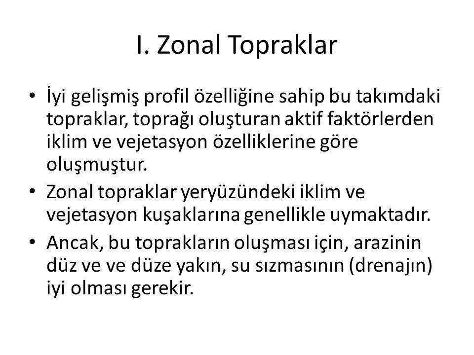 I. Zonal Topraklar