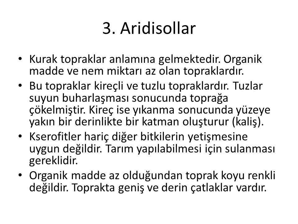 3. Aridisollar Kurak topraklar anlamına gelmektedir. Organik madde ve nem miktarı az olan topraklardır.