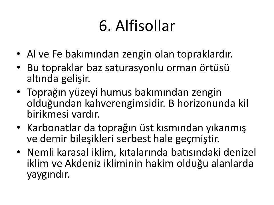 6. Alfisollar Al ve Fe bakımından zengin olan topraklardır.