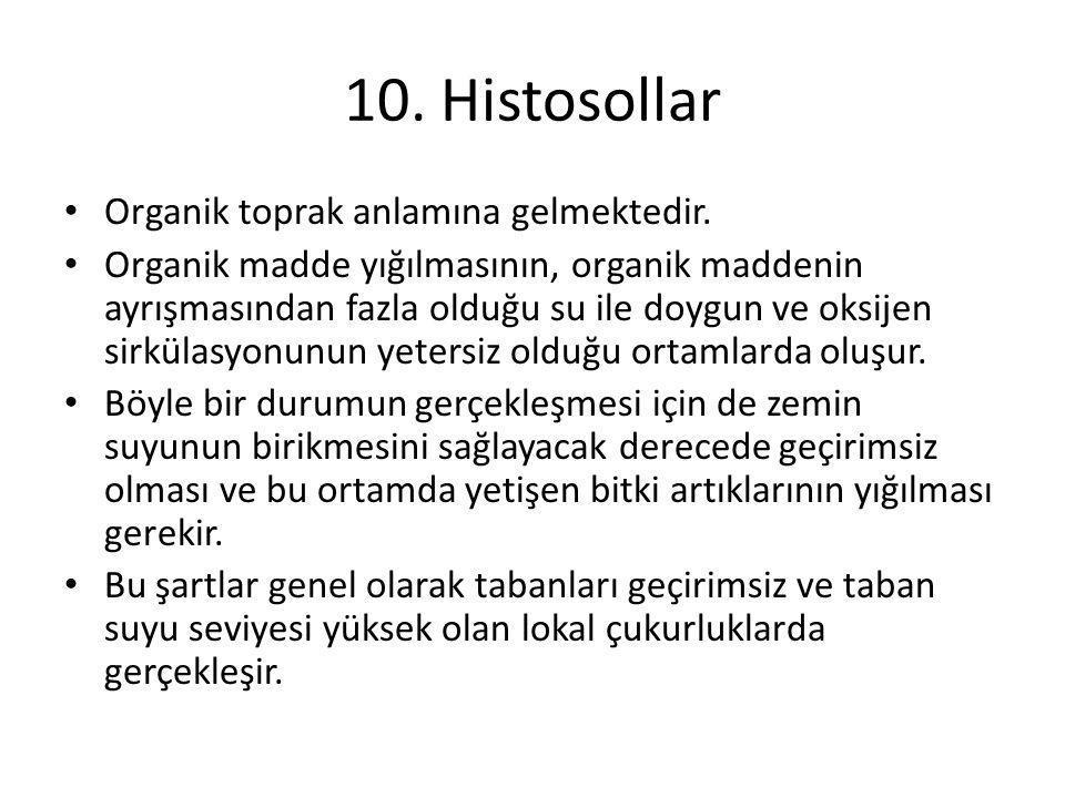10. Histosollar Organik toprak anlamına gelmektedir.