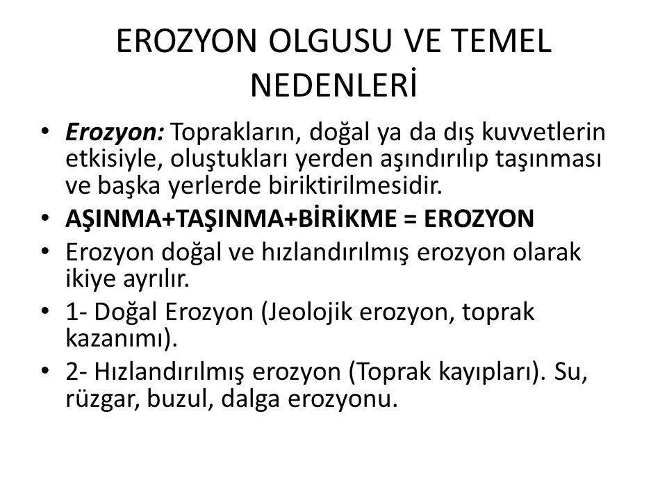 EROZYON OLGUSU VE TEMEL NEDENLERİ