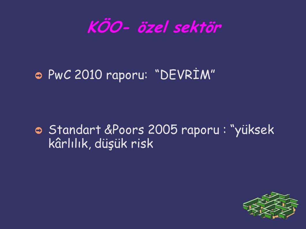 KÖO- özel sektör PwC 2010 raporu: DEVRİM