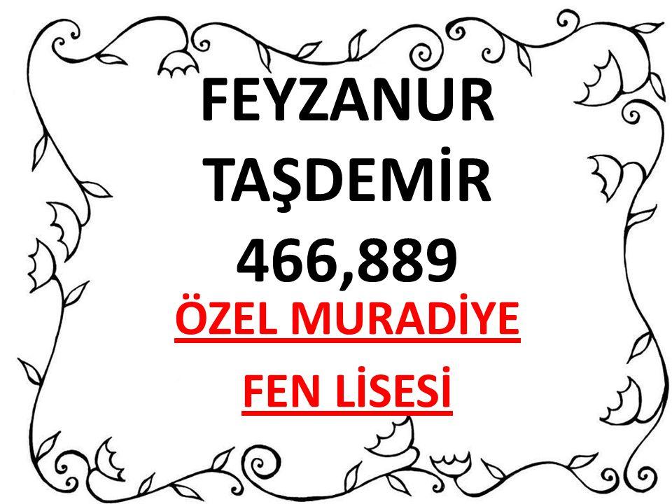 ÖZEL MURADİYE FEN LİSESİ