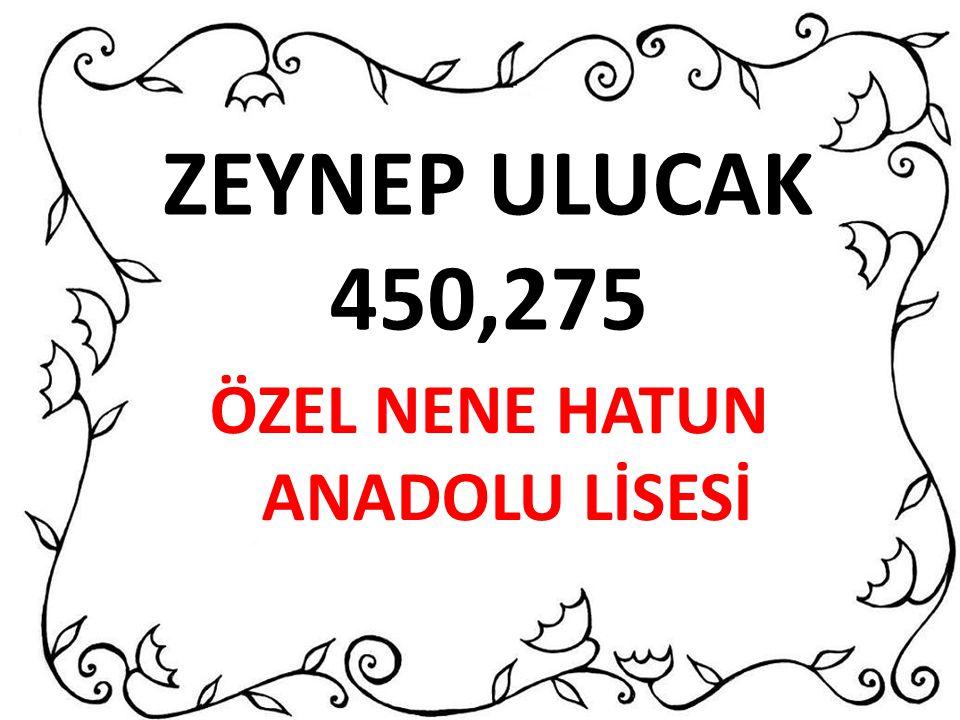 ÖZEL NENE HATUN ANADOLU LİSESİ