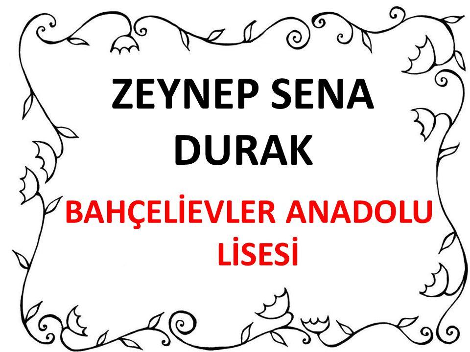 BAHÇELİEVLER ANADOLU LİSESİ