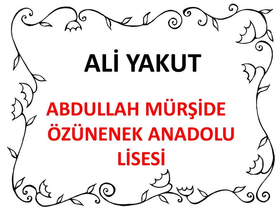 ABDULLAH MÜRŞİDE ÖZÜNENEK ANADOLU LİSESİ