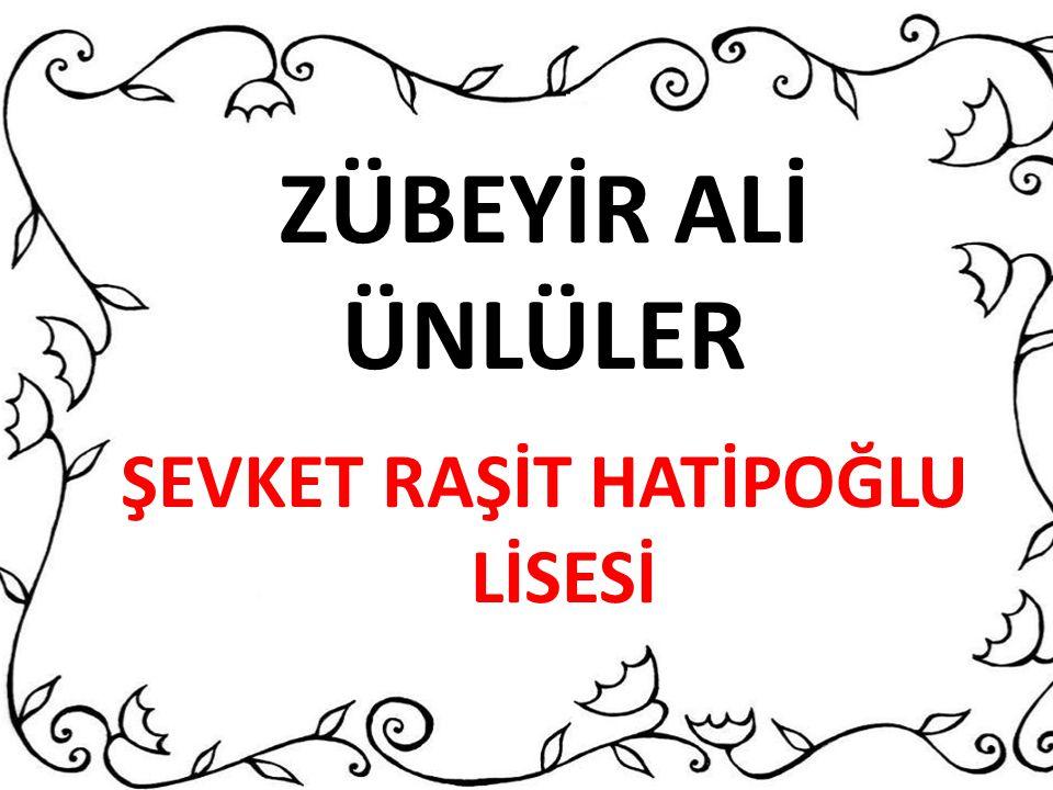 ŞEVKET RAŞİT HATİPOĞLU LİSESİ