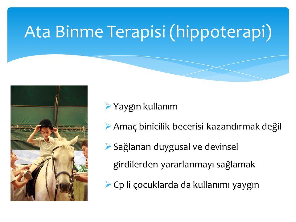 Ata Binme Terapisi (hippoterapi)