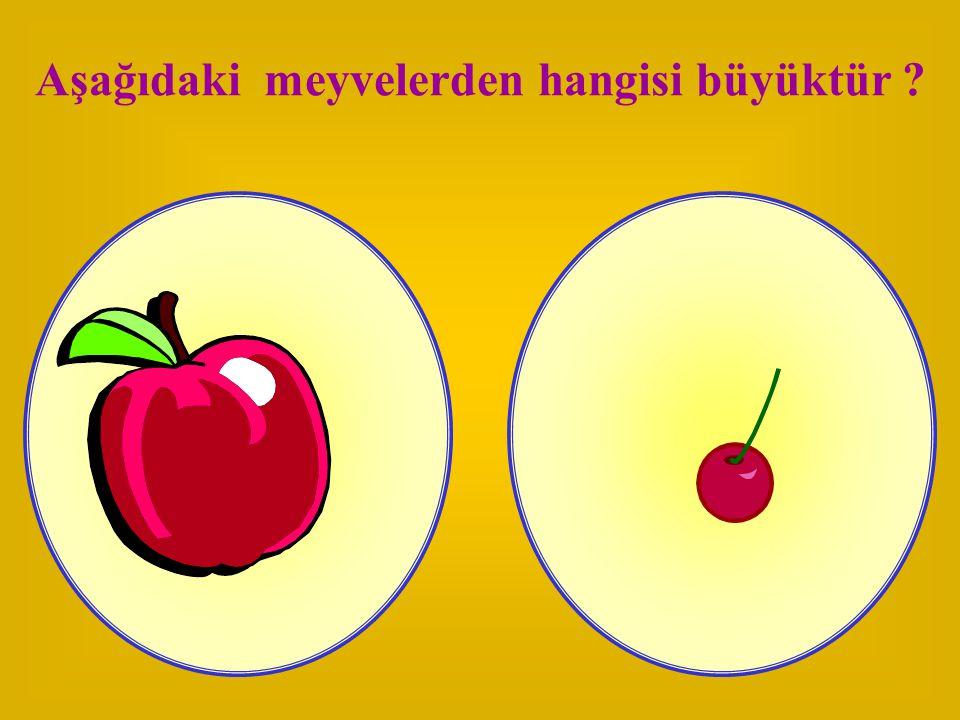 Aşağıdaki meyvelerden hangisi büyüktür