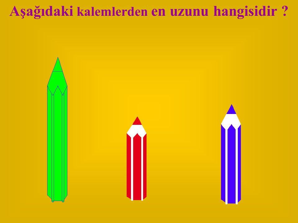 Aşağıdaki kalemlerden en uzunu hangisidir
