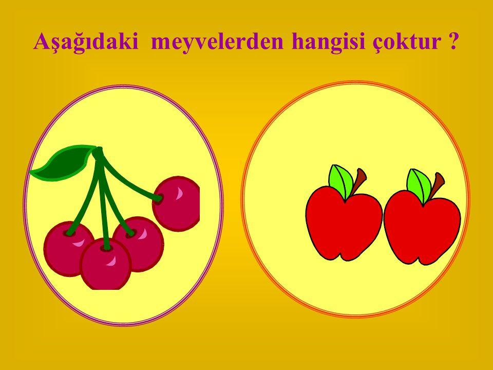 Aşağıdaki meyvelerden hangisi çoktur