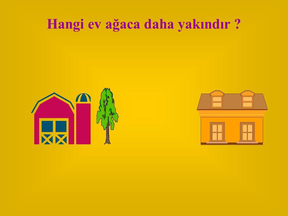 Hangi ev ağaca daha yakındır