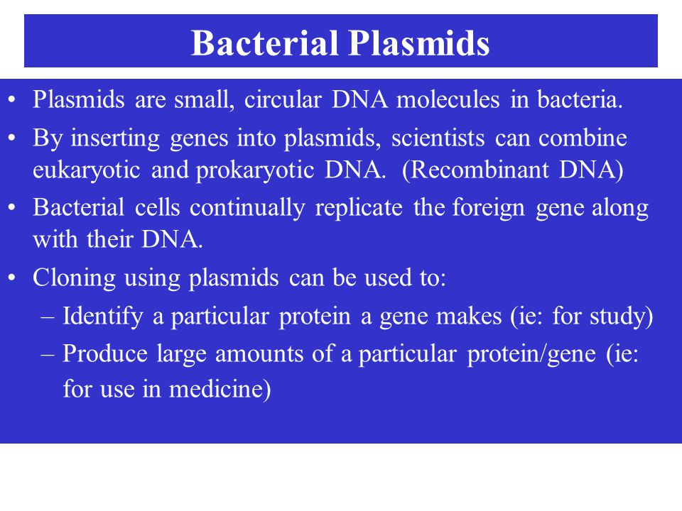Bacterial Plasmids Plasmids are small, circular DNA molecules in bacteria.