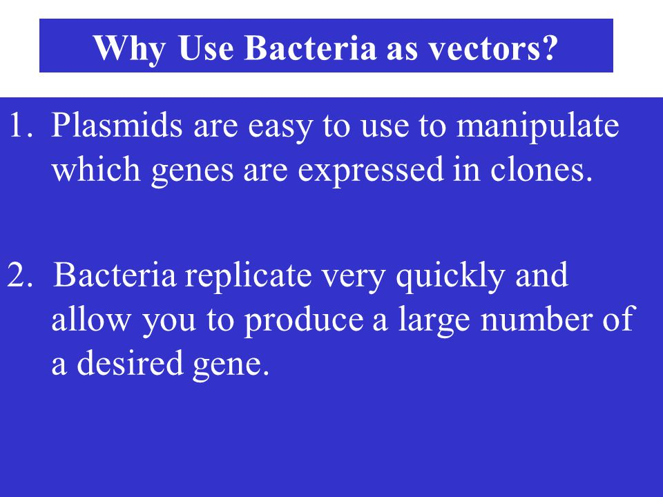 Why Use Bacteria as vectors