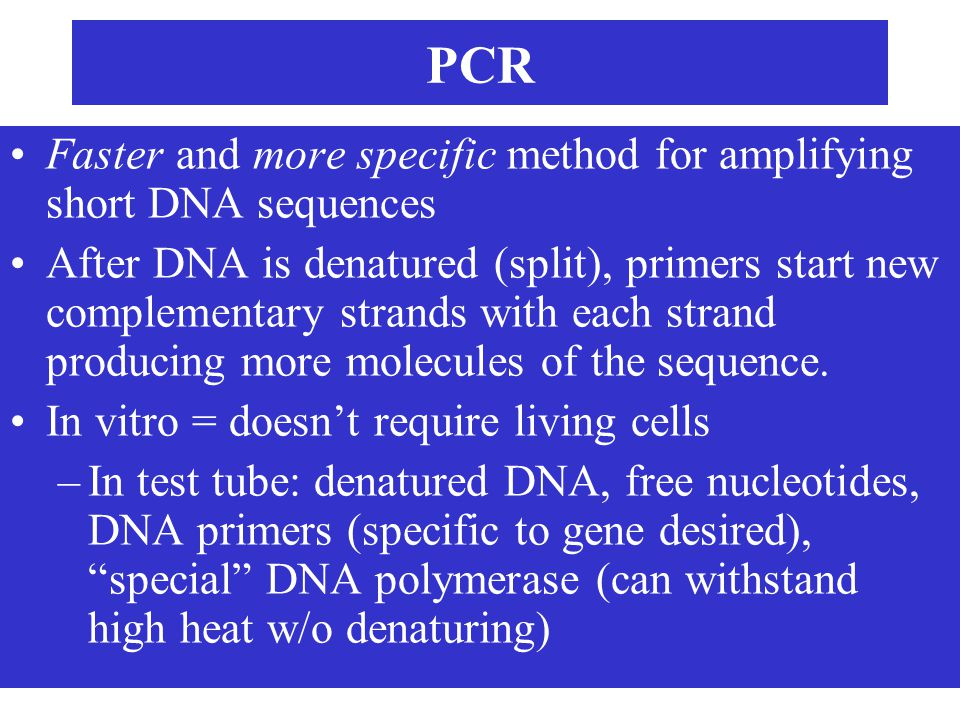 PCR Faster and more specific method for amplifying short DNA sequences