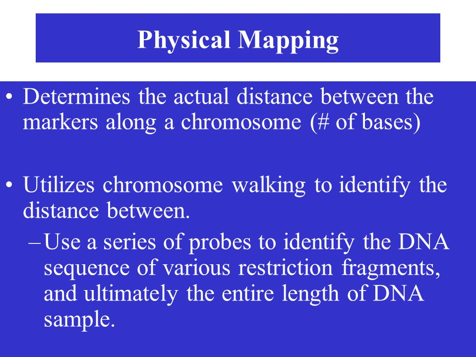 Physical Mapping Determines the actual distance between the markers along a chromosome (# of bases)