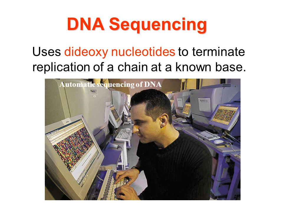 DNA Sequencing Uses dideoxy nucleotides to terminate replication of a chain at a known base.
