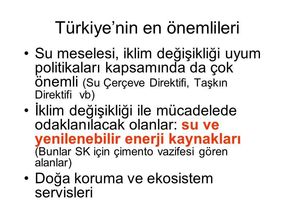 Türkiye'nin en önemlileri