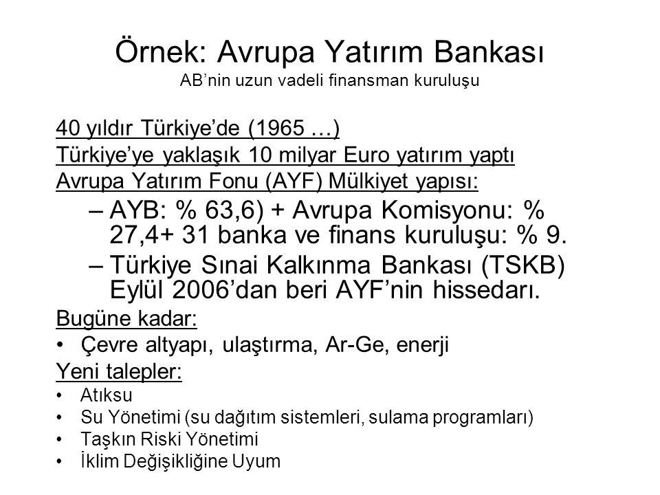 Örnek: Avrupa Yatırım Bankası AB'nin uzun vadeli finansman kuruluşu