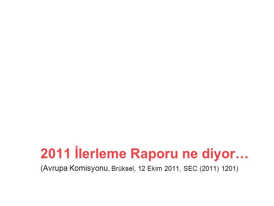 2011 İlerleme Raporu ne diyor…