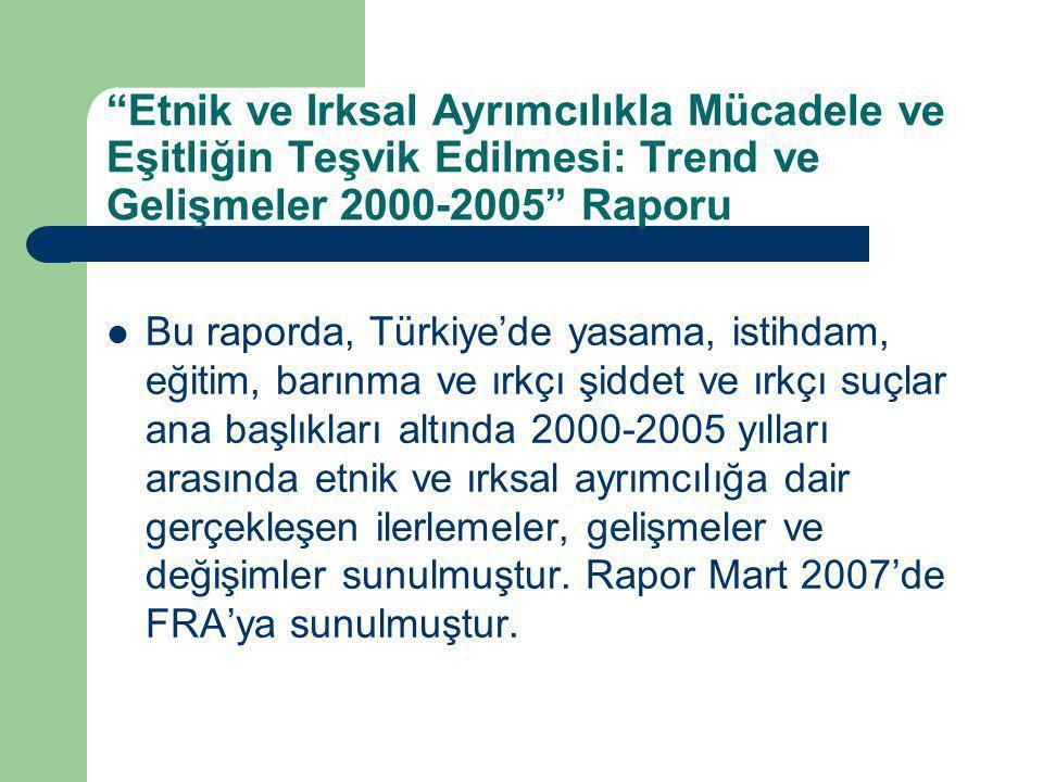 Etnik ve Irksal Ayrımcılıkla Mücadele ve Eşitliğin Teşvik Edilmesi: Trend ve Gelişmeler 2000-2005 Raporu