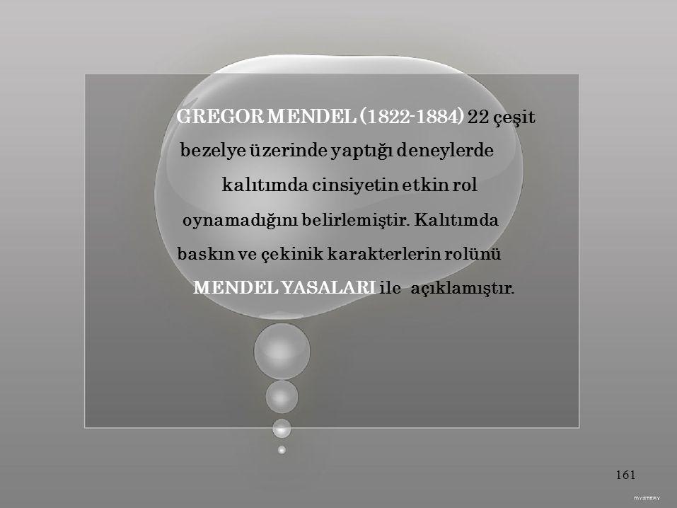 GREGOR MENDEL (1822-1884) 22 çeşit bezelye üzerinde yaptığı deneylerde