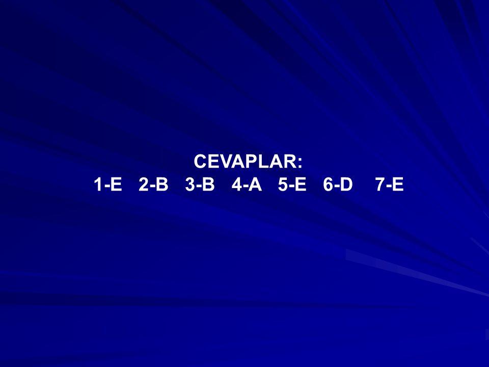 CEVAPLAR: 1-E 2-B 3-B 4-A 5-E 6-D 7-E