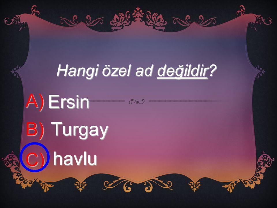 Hangi özel ad değildir A) Ersin B) Turgay C) havlu