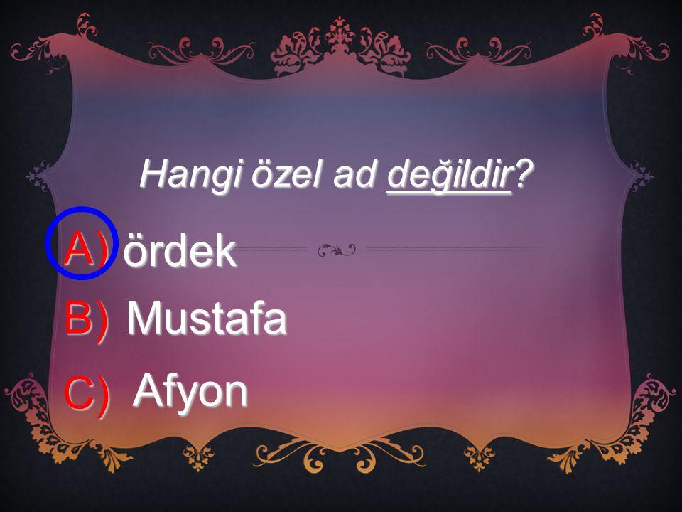 Hangi özel ad değildir A) ördek B) Mustafa C) Afyon