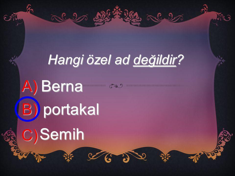Hangi özel ad değildir A) Berna B) portakal C) Semih