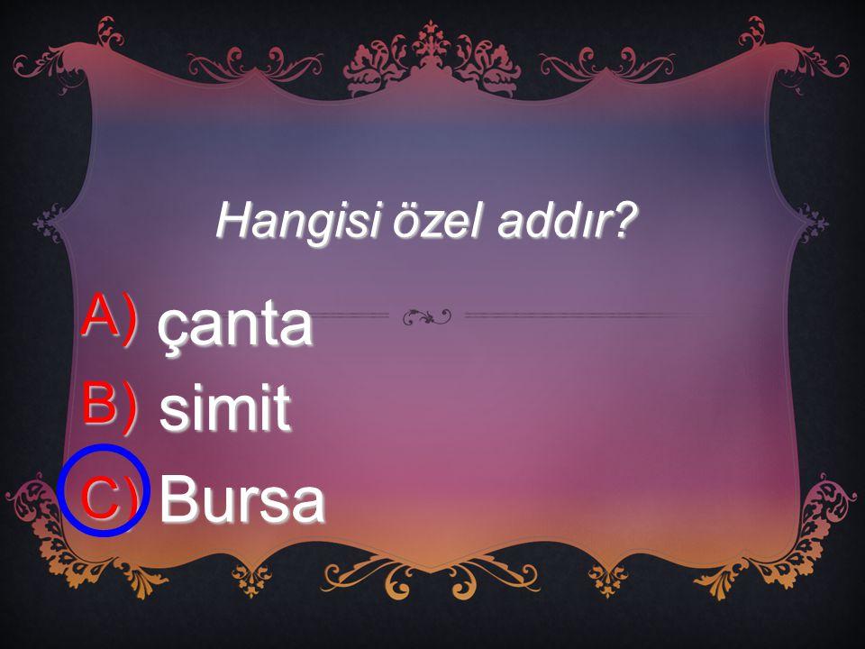 Hangisi özel addır A) çanta B) simit C) Bursa