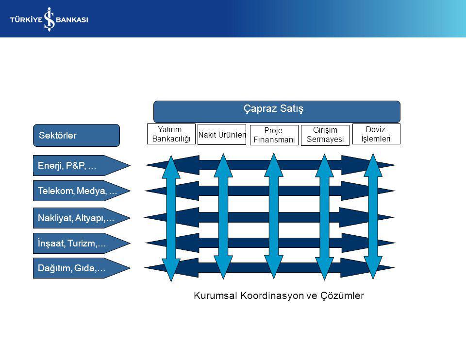 Kurumsal Koordinasyon ve Çözümler