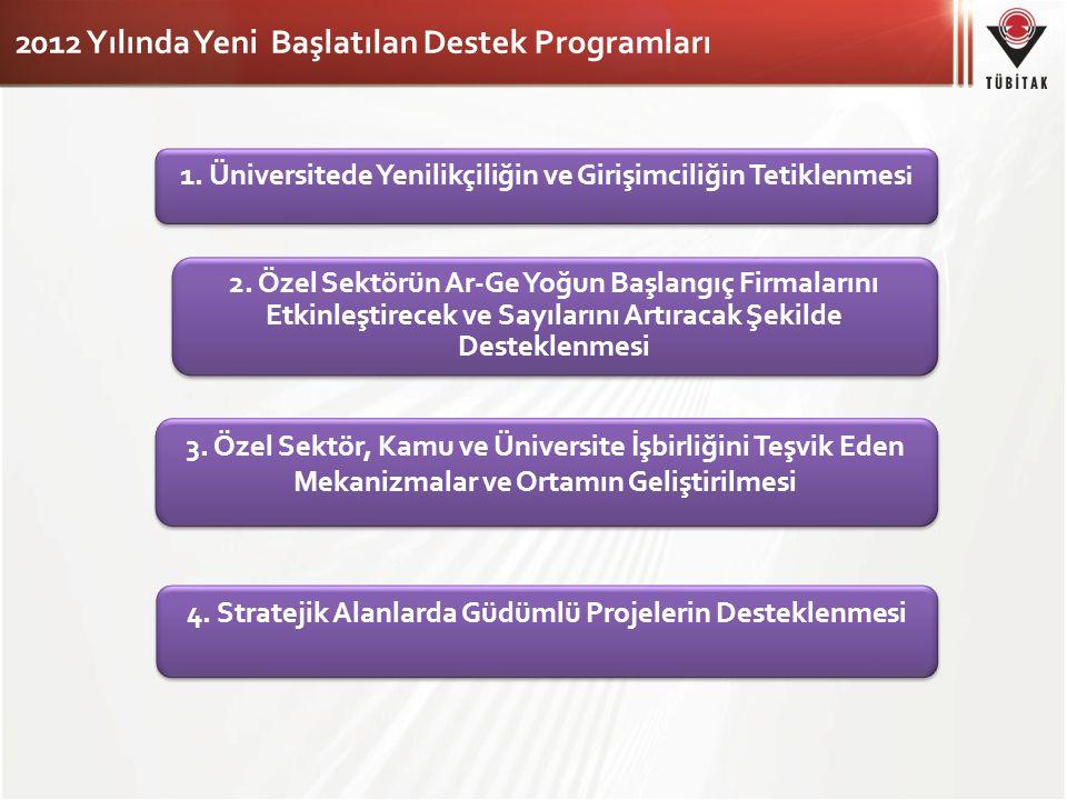 2012 Yılında Yeni Başlatılan Destek Programları