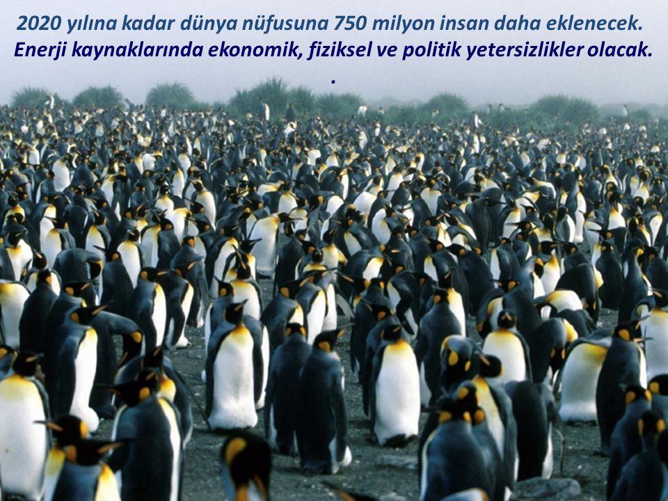 2020 yılına kadar dünya nüfusuna 750 milyon insan daha eklenecek.