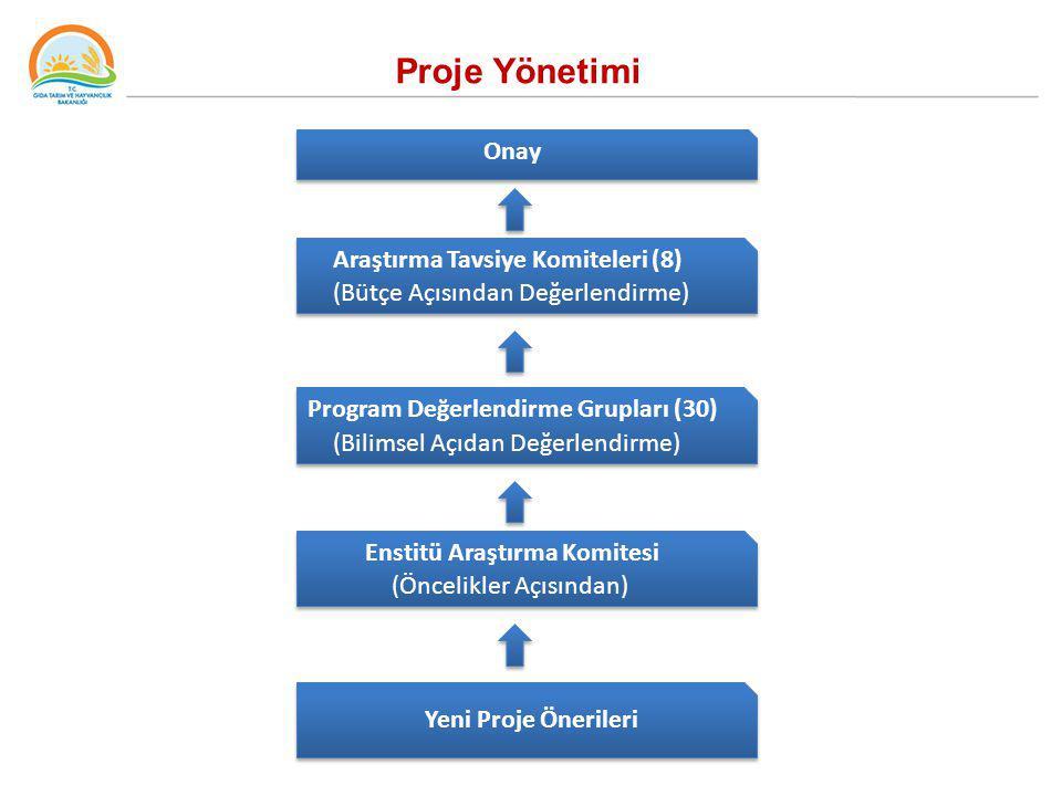 Proje Yönetimi Onay Araştırma Tavsiye Komiteleri (8)