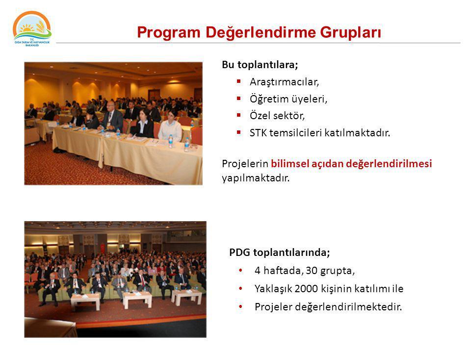 Program Değerlendirme Grupları