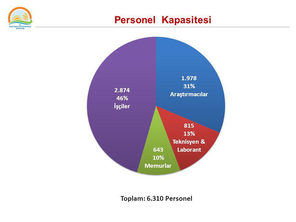 Personel Kapasitesi Toplam: 6.310 Personel