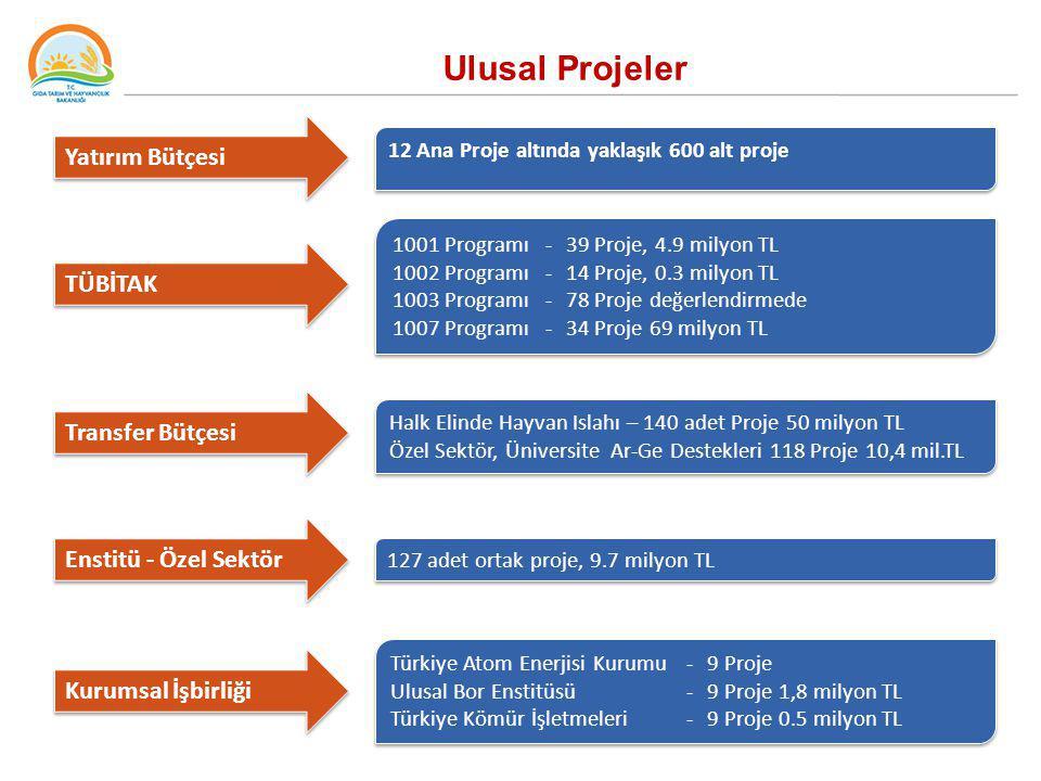 Ulusal Projeler Yatırım Bütçesi TÜBİTAK Transfer Bütçesi