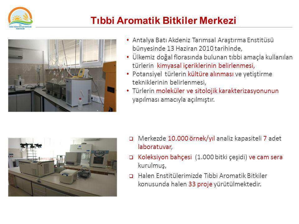 Tıbbi Aromatik Bitkiler Merkezi