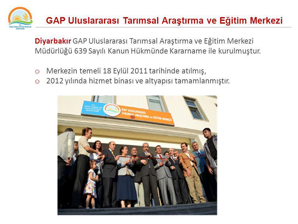 GAP Uluslararası Tarımsal Araştırma ve Eğitim Merkezi