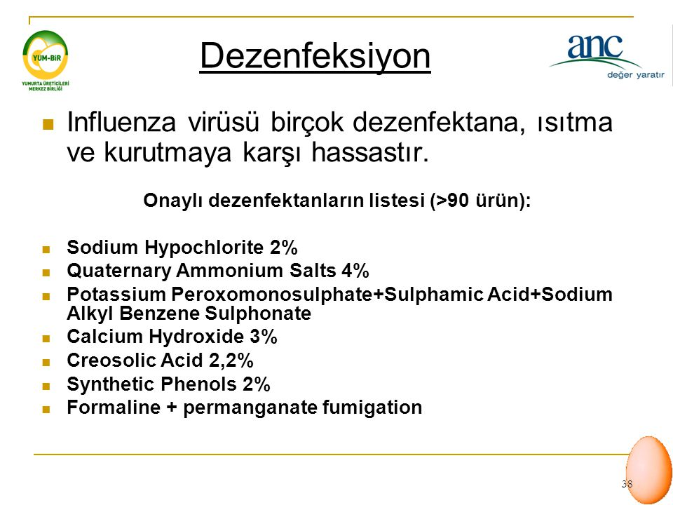 Onaylı dezenfektanların listesi (>90 ürün):