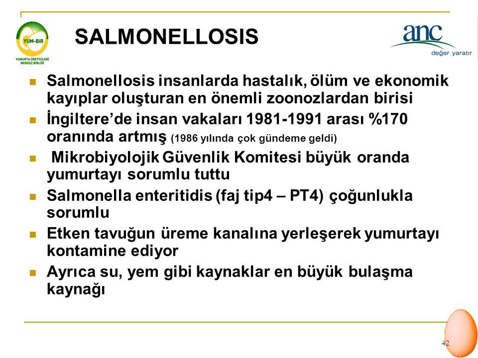 SALMONELLOSIS Salmonellosis insanlarda hastalık, ölüm ve ekonomik kayıplar oluşturan en önemli zoonozlardan birisi.